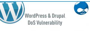 wordpress_dos