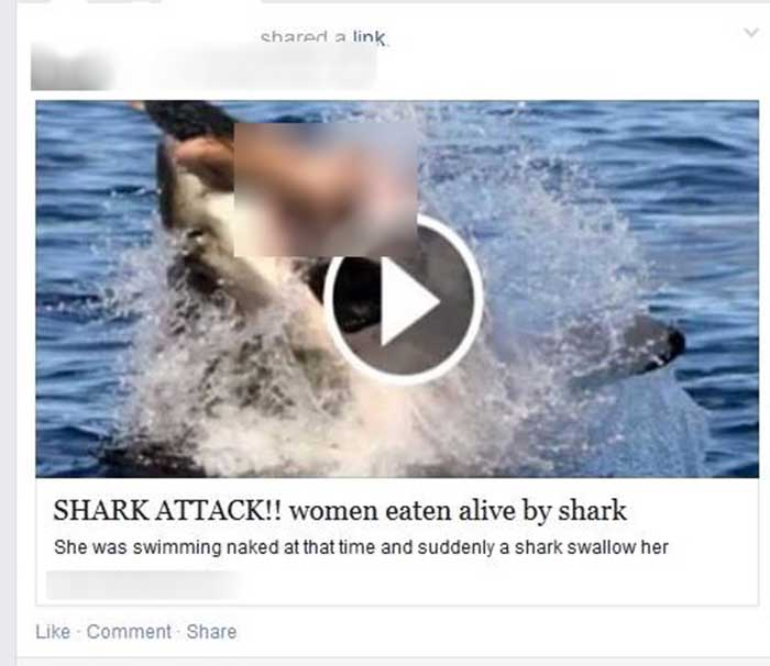 Woman Shark Attack (Google Images)