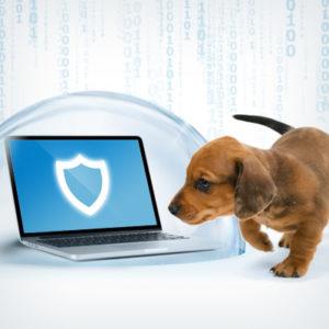 feature_blog_antimalware_pups